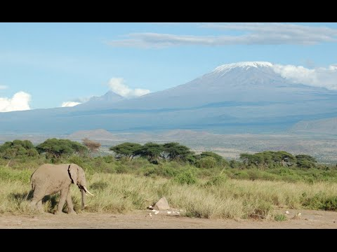 Top 10 Best National Parks in Africa | Travel Direction 2015