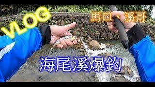 三芝海尾溪爆釣-TENKARA毛鉤-溪釣