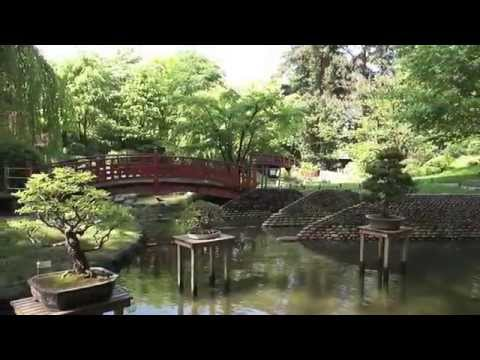 Mus e albert kahn paris jardin japonais youtube - Youtube deco jardin paris ...
