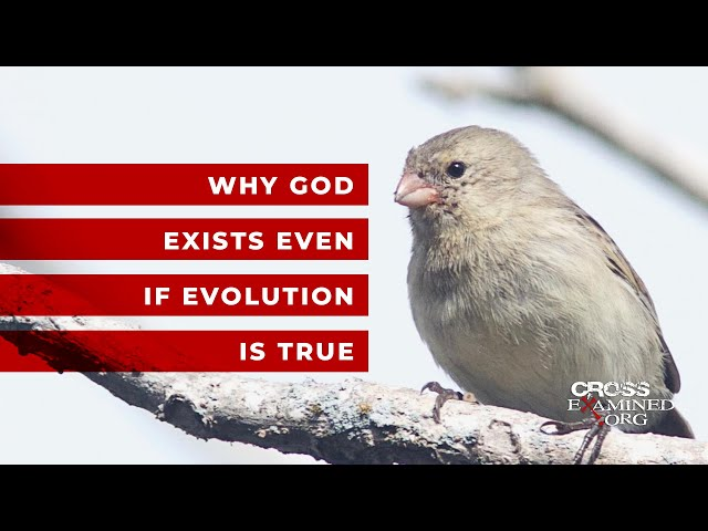 Why God exists even if evolution is true