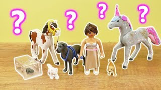 Playmobil DIY | Abstimmung - Stellas Haustier! Ihr entscheidet! Hund? Katze? Oder Einhorn?