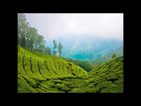 Darjeeling, India - Travel Guide and Attractions  New HD video 2017