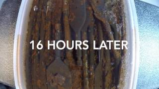 Time Lapse - Watching rust fall off using vinegar