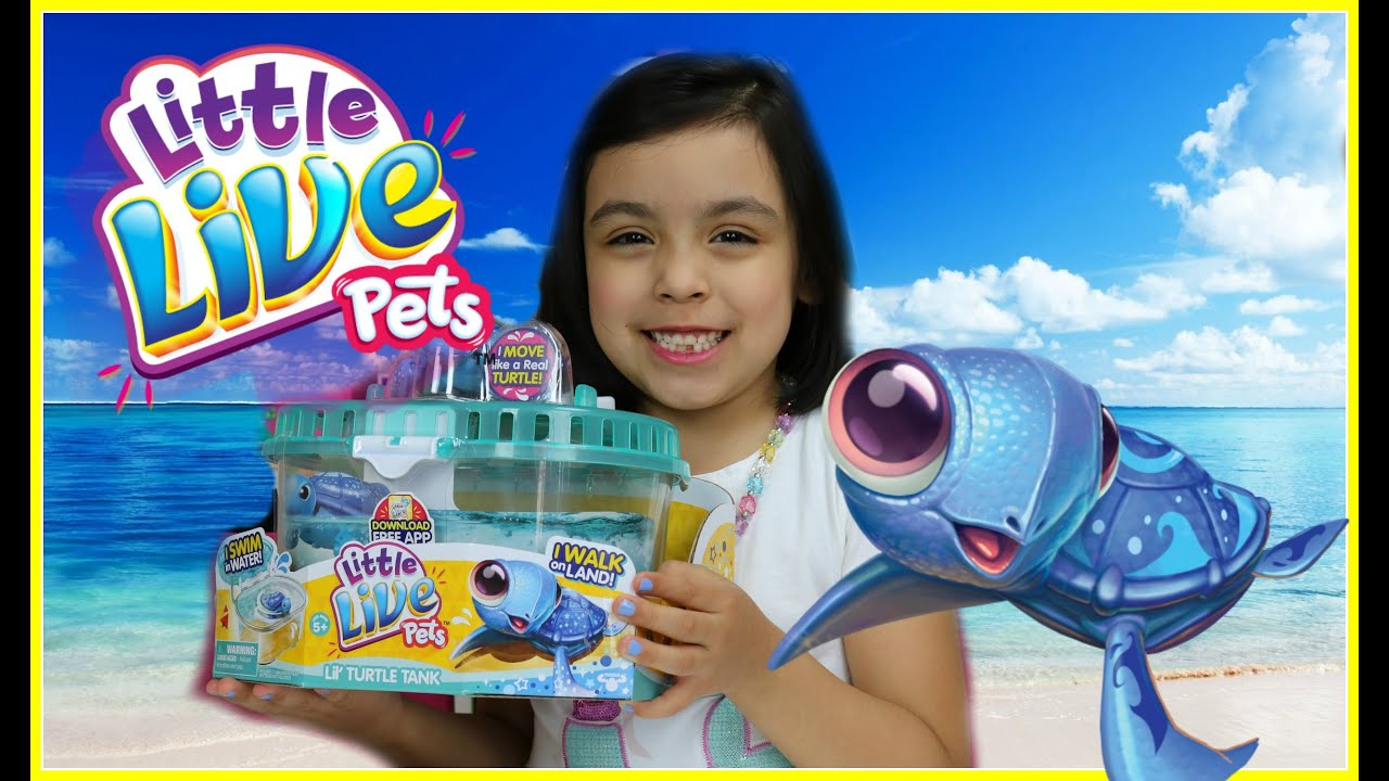 Playing With Little Live Pets Lil' Turtle Tank  By Moose Toys !
