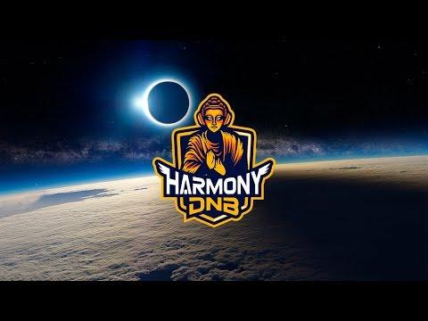 Swedish House Mafia - One (Netsky Remix)