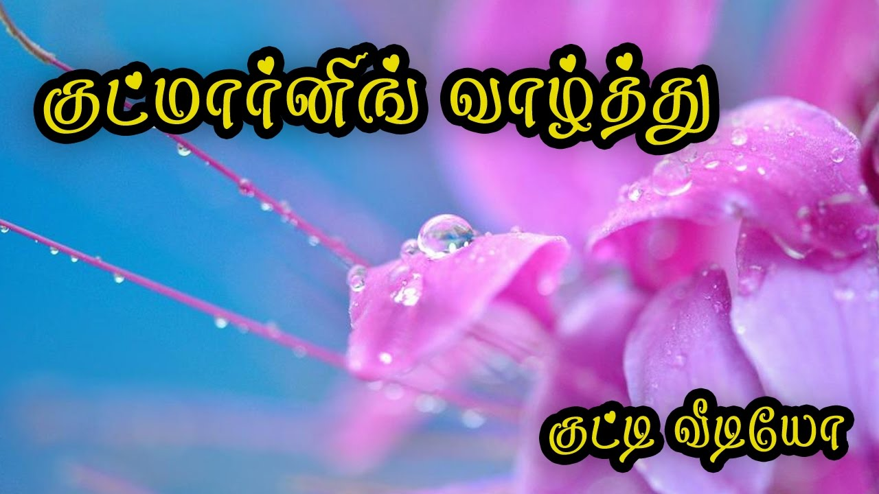 Good Morning Wishes In Tamil Whatsapp Video 068 Youtube