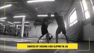 Counter kick check and Slipping the Jab | MMA Training Techniques and Highlights