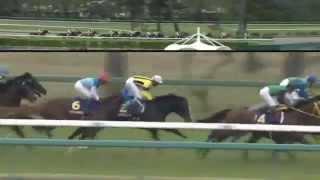 2014.04.20 Satsuki Sho (Japanese 2000 Guineas) - Isla Bonita