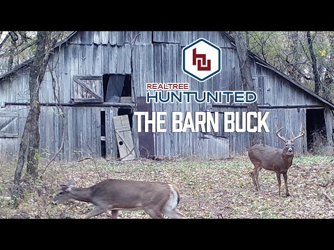 Hunting a Buck from a Barn | Hunt United