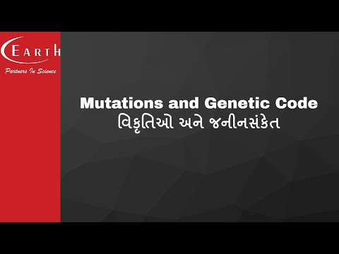 Mutations and Genetic Code | વિકૃતિઓ અને જનીનસંકેત | Molecular Basis of Inheritance