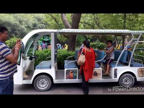 Delhi Zoo ||snake lizard Elephent etc a must watch video..