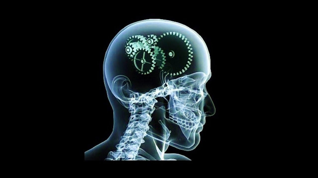 40 hz light strobe gamma 40 hz light and sound neurohacking alzheimers ii youtube