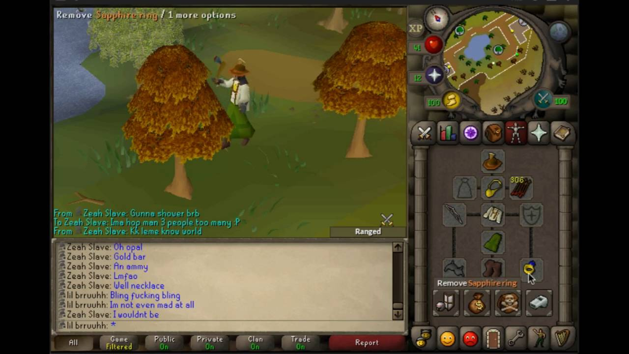 Lil Bruh S Osrs Zeah Ironman 5 Xeric S Talisman Youtube Probably you just got unlucky. youtube