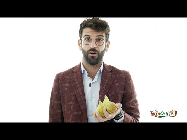 TERRA ORTI TV NUTRIZIONISTA - PERA