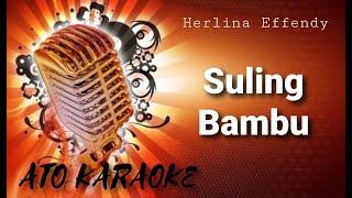 HERLINA EFFENDY - Suling bambu ( karaoke )