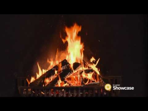 Holiday Yule Log