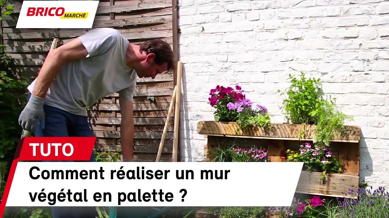 comment raliser un mur vgtal en palette bricomarch with
