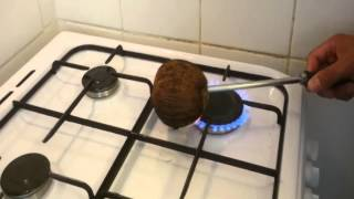 Quick and easy way to remove the coconut meat from the shell