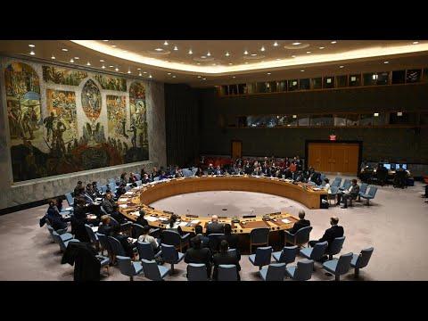 مجلس الأمن يرفض مشروع قرار روسي لخفض المساعدات الأممية إلى سوريا  - نشر قبل 4 ساعة