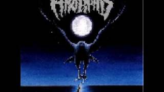 8-bit: Black Winter Day - Amorphis