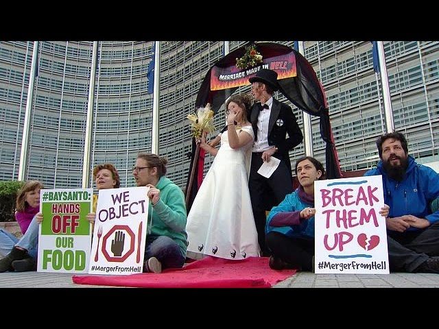 Bayer-Monsanto merger is marriage made in hell, say activists