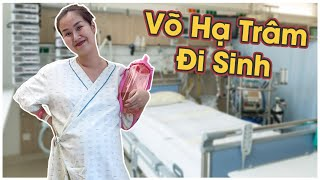 Ngày Trâm đi đẻ | Vo Ha Tram Official