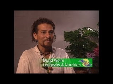 David Wolfe Raw vesves Living Foods Festival Interview