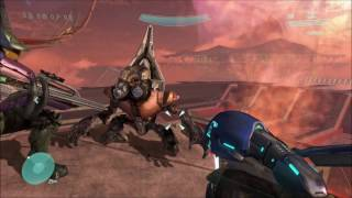 All Secret Grunts In Every Halo Game (REVISITED)