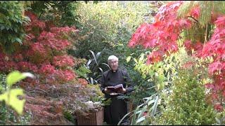Morning Prayer – Sunday, 24th Oct๐ber 2021 | Canterbury Cathedral