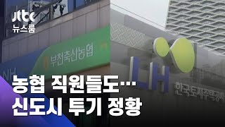 농협 직원들, 가족 동원 '셀프 대출'로 신도시 투기 정황 / JTBC 뉴스룸