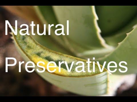 How to Preserve Natural Aloe Vera Homemade Shampoo (for Hair Growth & Treating Hair Loss) Pt 2 / 3