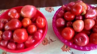 Заготовка помидор на зиму рецепты без стерилизации.#суфикс