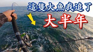 什麼大魚讓我追了大半年屏東大鵬灣岸拋硬餌尻大魚#赫馬士 Land based Popping for Queenfish in Taiwan