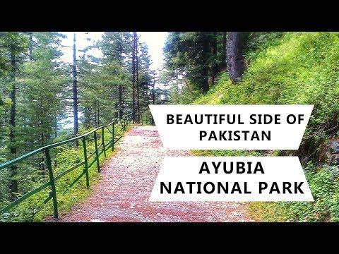 DIY Travel Log of Tourist Attractions in Pakistan | Ayubia National Park | Wildlife of Pakistan