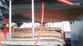 Plywood Machine/rotary Peeling Lathe/veneer Production Line/weimu Machinery