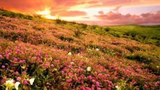 Удивительно красивая музыка - Джеймс Ласт 'Жизнь прекрасна'   #Музыка