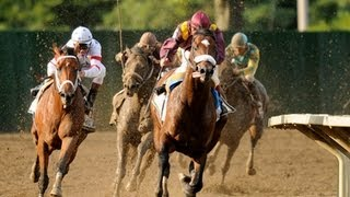 2008 Haskell Invitational Stakes - Big Brown