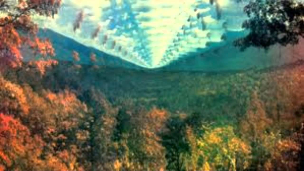 Tame Impala Solitude Is Bliss Youtube
