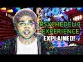 10 Hallucinatory States Of The PSYCHEDELIC Experience