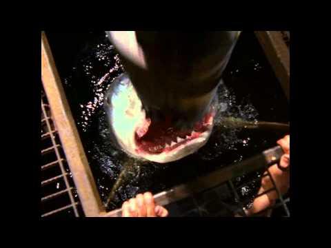 red water ending (movie)