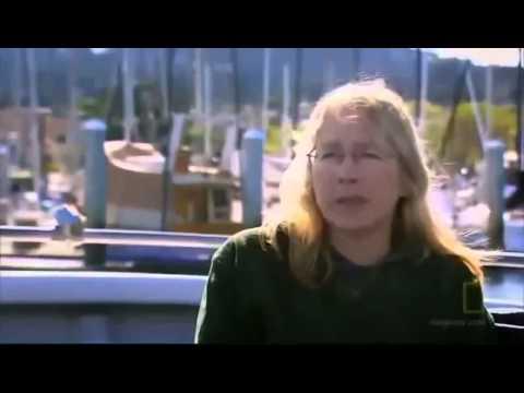 shark attack, killer whale vs great white, great white shark vs killer whale, Full documentary HD