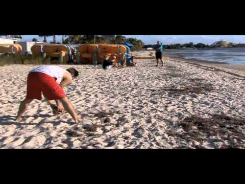 Waterways Episode 274 - The Beach and Your Health AND Biscayne Birding Trail