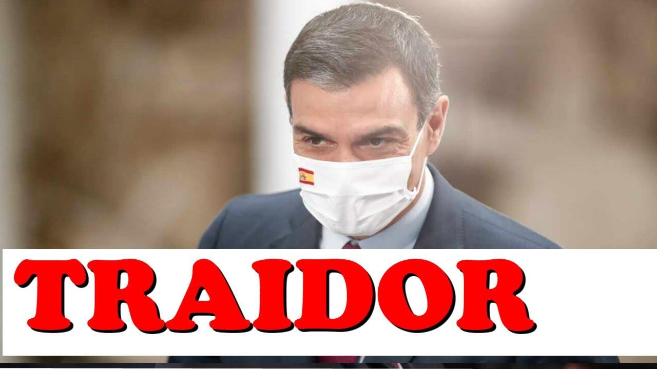 Pedro Sánchez ha TRAICIONADO a SUS VOTANTES