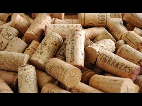 Curso Segredos do Vinho - Taxa de Rolha
