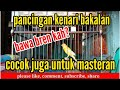 Kenari Isian Ciblek Ngebren  Mp3 - Mp4 Download