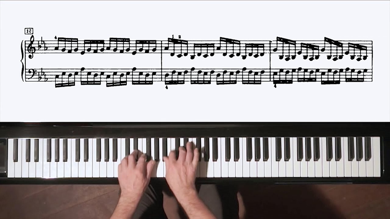 Download Bach Preludes and Fugues 1-48 + FREE MP3/Wave 4h.20m Continuous Piano Music