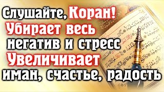🎧 СЛУШАЙТЕ КОРАН - УБИРАЕТ ВЕСЬ НЕГАТИВ И СТРЕСС, УВЕЛИЧИВАЕТ ИМАН, СЧАСТЬЕ