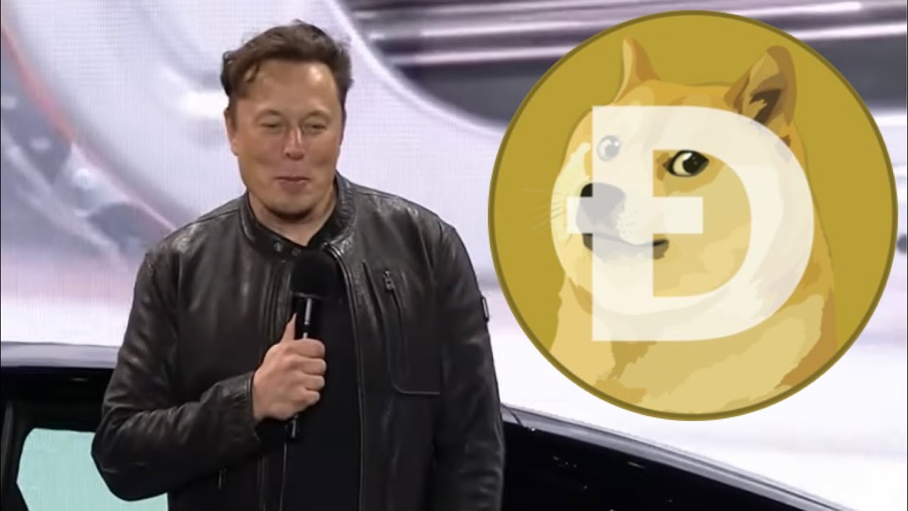 Dogecoin Tesla Bitcoin Acceptance TRUTH REVEALED ⚠️ (Final Stand Show)