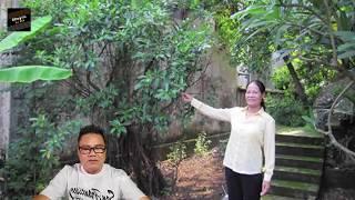 """Chuyện tâm linh có thật - Rùng mình chuyện """"m""""a"""" nữ bắt trai trẻ làm chồng ở Hà Nội"""