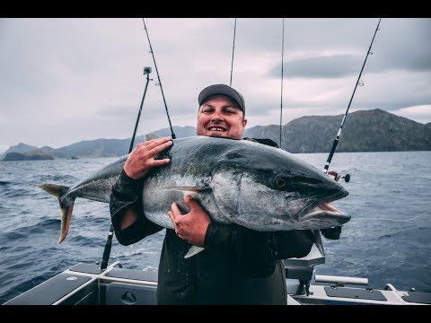 Biggest New Zealand Kingfish 2017/2018 NZ Fishing Competition